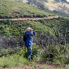 Save Mount Diablo - 2015 Bioblitz<br /> Morgan Fire Footprint. <br /> Rhine Canyon Road. <br /> Malcolm Sproul, Chair of the Land Committee, <br /> Save Mount Diablo