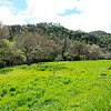 VIEW 1 - March 4, 2017 <br /> Save Mount Diablo <br /> Diablo Restoration Team (DiRT) Workday<br /> Big Bend (Marsh Creek 8)