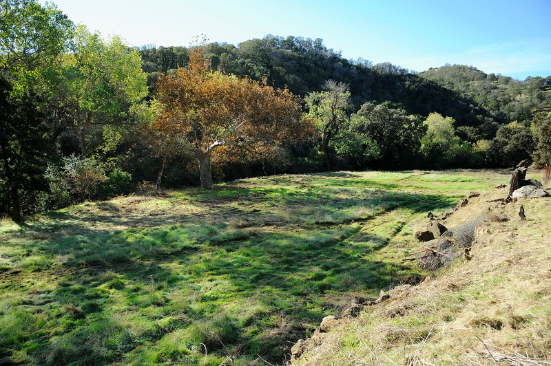 VIEW 1 - Nov. 3, 2016 <br /> SMD Big Bend (Marsh Creek 8) <br /> Baseline photos for flood plain <br /> restoration project .  <br /> Save Mount Diablo's Diablo Restoration Team (DiRT) and Stewardship workday.