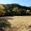 VIEW 1 - Nov, 14, 2017  <br /> SMD Big Bend (Marsh Creek 8) <br /> Baseline photos for flood plain <br /> restoration project .  <br /> Save Mount Diablo's Diablo Restoration Team (DiRT) workday.