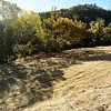 VIEW 2 - Nov, 14, 2017  <br /> SMD Big Bend (Marsh Creek 8) <br /> Baseline photos for flood plain <br /> restoration project .  <br /> Save Mount Diablo's Diablo Restoration Team (DiRT) workday.