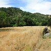 VIEW 1 - June 3, 2017 <br /> SMD Big Bend (Marsh Creek 8). <br /> Baseline photos for West flood plain. <br /> Save Mount Diablo's Diablo Restoration Team (DiRT).