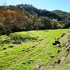 VIEW 1 - Nov. 17, 2016 <br /> SMD Big Bend (Marsh Creek 8). <br /> Baseline photos for West flood plain <br /> after tree planting on Nov. 5, 2106. <br /> Save Mount Diablo's Diablo Restoration Team (DiRT).