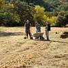 Save Mount Diablo <br /> DiRT Workday <br /> Big Bend (Marsh Creek 8) <br /> Nov, 14, 2017