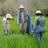 Save Mount Diablo <br /> Diablo Restoration Team (DiRT) Workday<br /> Big Bend (Marsh Creek 8) <br /> March 4, 2017