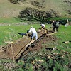 Stewardship Workday <br /> Save Mount Diablo <br /> Curry Canyon Ranch <br /> Jan. 20, 2018