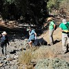 IPM Workday <br /> Curry Canyon Creek <br /> Save Mount Diablo <br /> Curry Canyon Ranch <br /> Sept. 27, 2017