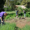 Save Mount Diablo workday <br /> Diablo Restoration Team (DiRT) <br /> Marsh Creek 4 <br /> April 1, 2017
