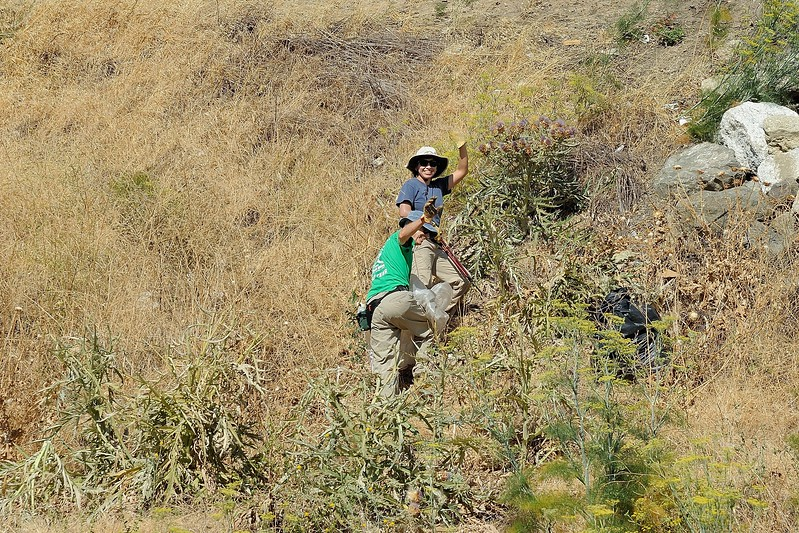 IPM Workday <br /> Thomas Home Ranch <br /> Save Mount Diablo <br /> July 8, 2017
