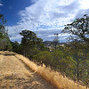 Looking Northeast from the eastern side of <br /> Wright Canyon <br /> Save Mount Diablo <br /> Sep. 21, 2016