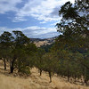 Looking Northeast from the eastern side of <br /> Wright Canyon. <br /> Save Mount Diablo <br /> Sep. 21, 2016