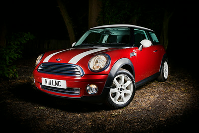 Mini in the Woods