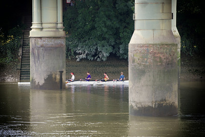 Rowers under the bridge