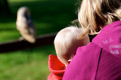 Megan and Mummy watching an owl