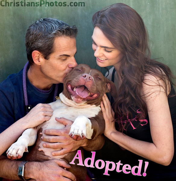 Zina was so happy during our shelter shoot with ModelsNMutts.com