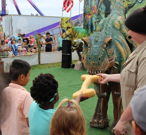 CAMDEN CHAFFEE | THE GOSHEN NEWS<br /> A young crowd member offers a treat to a large remote-controlled T. Rex Monday during the Jurassic Kingdom show at the Elkhart County 4-H Fair.