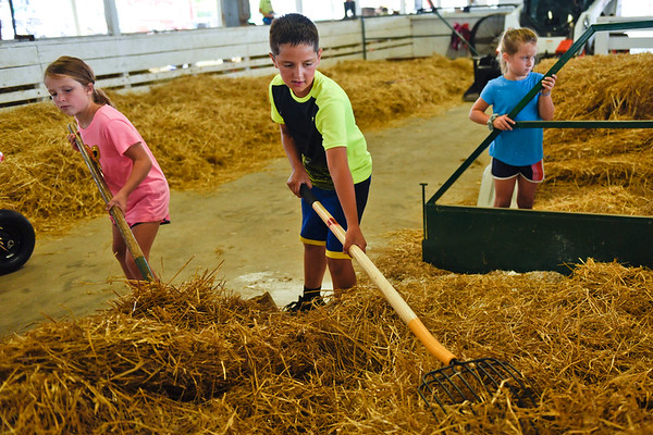 BEN MIKESELL | THE GOSHEN NEWS<br /> Hudson Yoder, 10, of Shipshewana, works with his sisters Hadley, 7, left, and Harper, 6, right, while setting up their space Thursday in the dairy barn at the Elkhart County 4-H Fairgrounds.