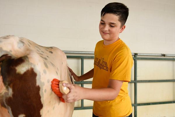 BEN MIKESELL | THE GOSHEN NEWS<br /> Brenden Blosser, 14, of Goshen, at the washing station Thursday.