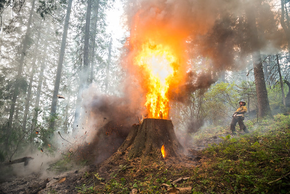 Cutting Fireline