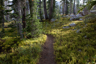 Trail from Vernon Lake to Edna Lake