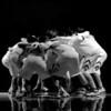 Boys Basketball - Colfax 2014 008