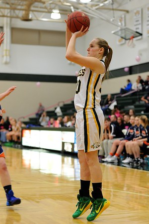 Girls Basketball - Colfax Mingo 2015 060