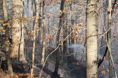 Brush fire - 99 Wild Duck Rd. Stamford, CT - 11/22/2020