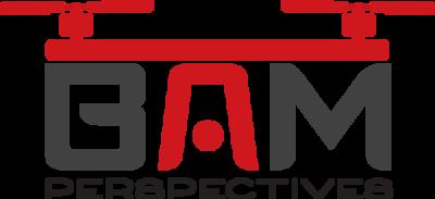 BAM Perspectives logo
