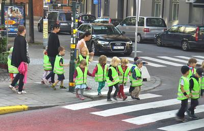 Scandinavia for First Grade