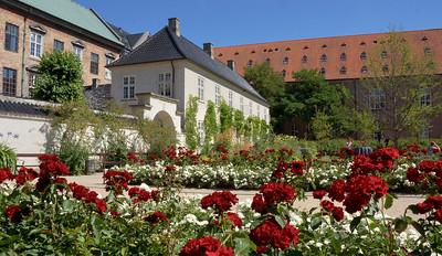 The Garden Association's garden