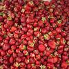 Fresh strawberries in the market