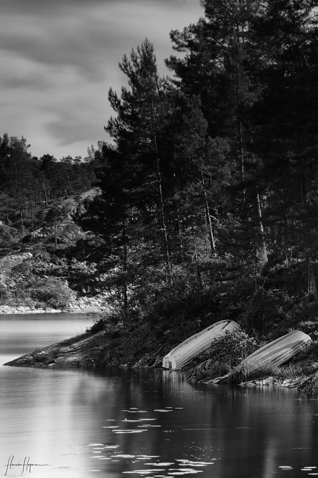 Norway, en eeuwig zingen de bossen