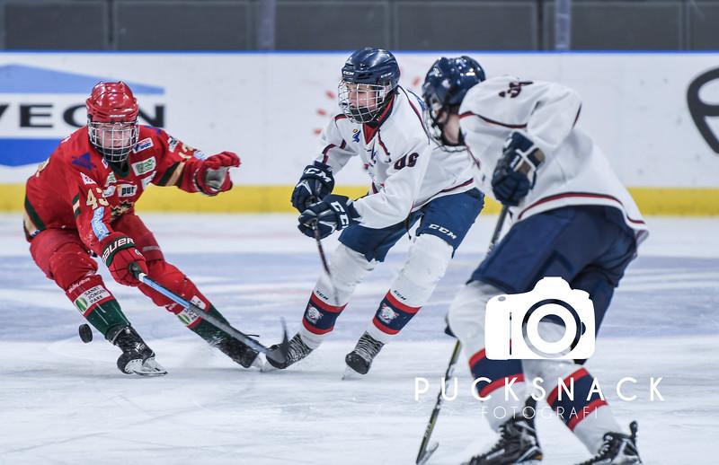 Ungomshockey