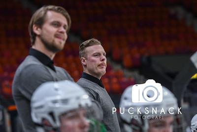 Scandinavium Cup