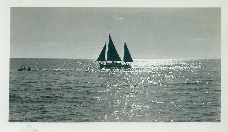 Local sailing