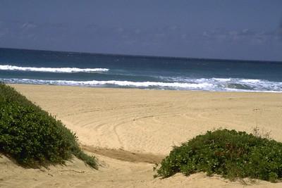 Hawaii 97