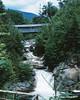 Sentinel Pine Covered Bridge - Flume Gorge - Franconia Notch State Park
