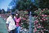 1964 - One of only a few pictures of my great grandfather (with my grand mother) at Elizabeth Park in CT