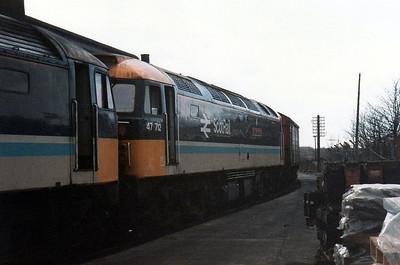47712 'Lady Diana Spencer' Haymarket Depot.
