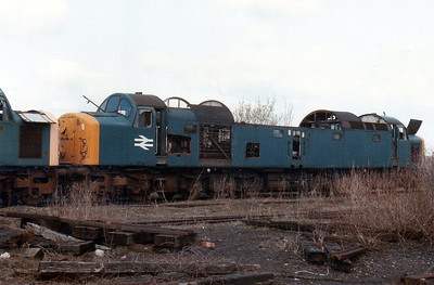 40014 'Antonia' Swindon Works (ZL).