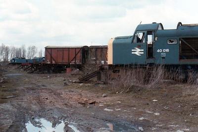40016 'Campania' Swindon Works (ZL).