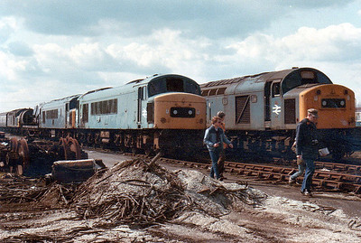 46038 & 45024 amongst the Class 40s at Swindon Works (ZL).