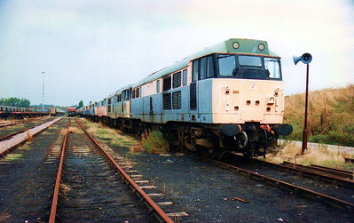 31290 Heads the line of 21 scrap/stored class 31s in Toton New Yard.