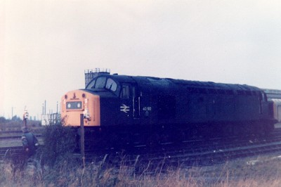 Class 40_40192 on March TMD