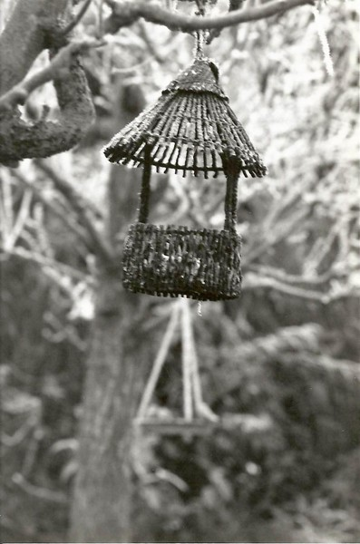 Bird Feeder Dec 94