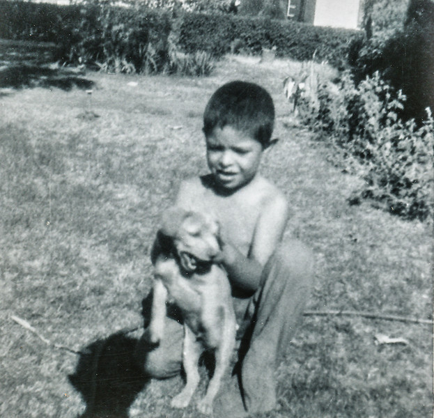 Sort ID: 1955-V Image ID: C561 (est) Year: 1955. Fred playing with Topsy. Edward remembers Topsy as a dog who really liked chasing the rear wheels of cars on Mountain Ave. Alas, his luck ran out.