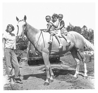 McManns, who lived on the hill past the Clarks had 3 beautiful horses.  One day their daughter rode hers over and let us have a short ride.  Chrissy was with us.  You can see Dad's Sears appliance repair truck in the background.
