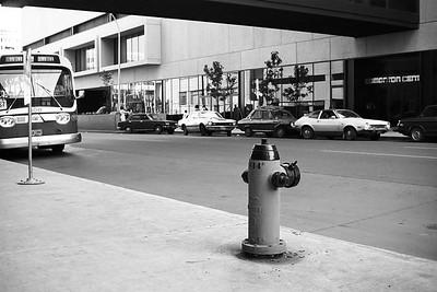 Fireplug in Front of Edmonton Centre