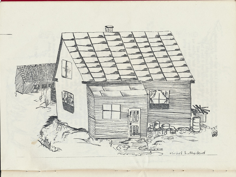 Homes around the Bay 1971: Michael Sutherland drawing.