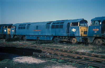 "Class 52 No D1034 ""Western Dragoon"" in Swindon Works on 27 February 1977"